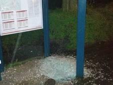 Bushokjes en fietsen vernield in Vinkeveen