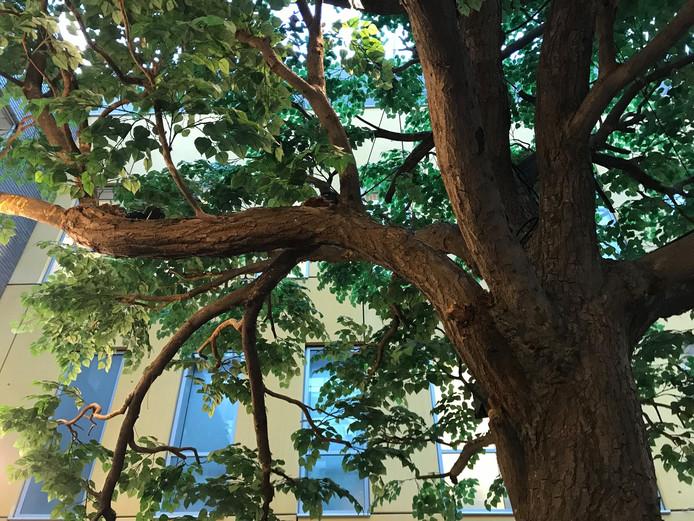 De kunstboom