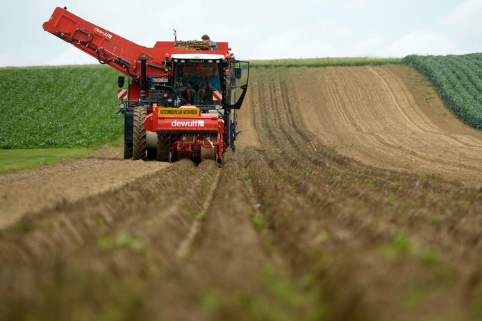 Agriculture en Flandre (illustration)