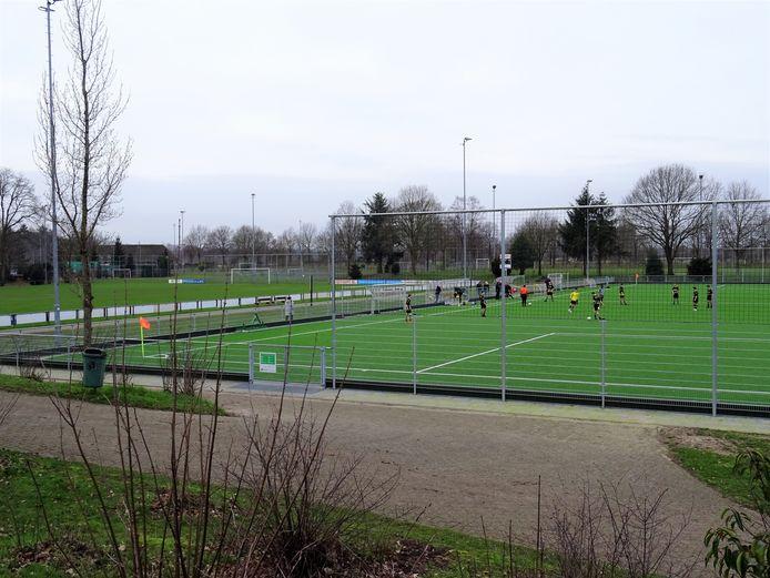 Het nieuwe kunstgras op sportpark Wilhelmina: thuishaven van de drie voetbalclubs CHRC, Redichem en RVW