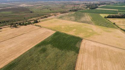 Boerenbond hoopt op erkenning van droogte als landbouwramp