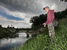 Zomerserie: 'Het is droevig gesteld met de visstand'