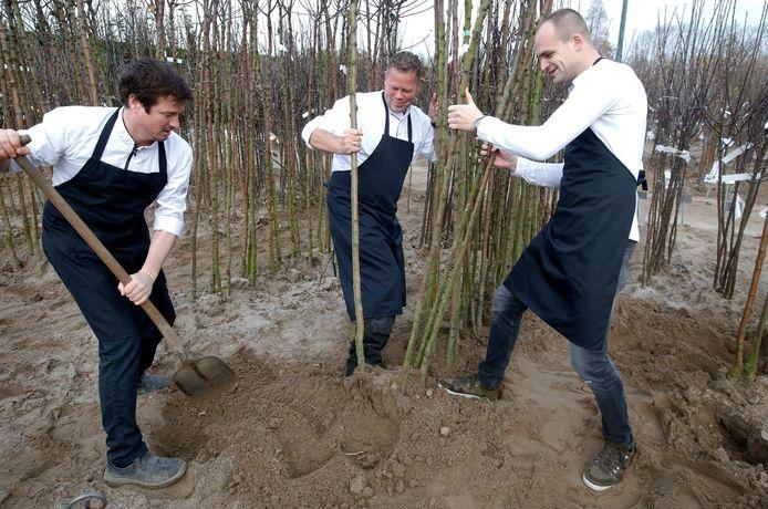V.l.n.r. Martin Faber, Maurice Rutten  en Maarten de Weert steken hun handen uit de mouw bij boomkwekerij De Batterijen in Ochten.