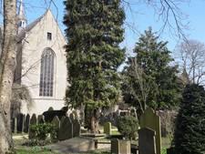 Bredase begraafplaats Oud Ginneken duurste van Nederland