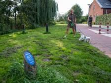 SGP Veenendaal wil opruimplicht op hondenuitlaatplaatsen: 'Ik heb sowieso altijd zakjes bij me'