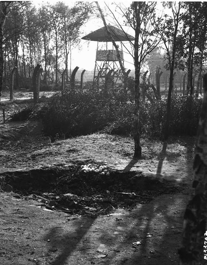 Prikkeldraadomheining met wachttoren op achtergrond
