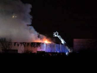 Brandweer blust grote industriebrand op bedrijventerrein in Diegem