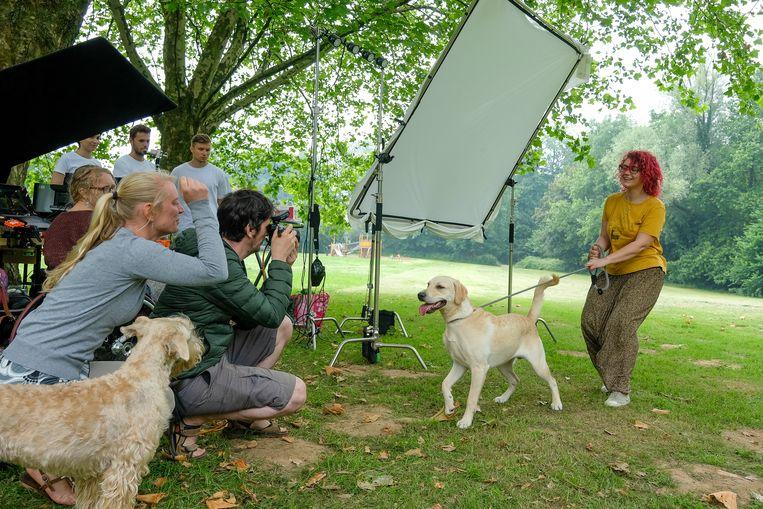 In de hondenweide van het Dielegembos in Jetten konden baasjes een professionele fotoshoot doen met hun trouwe viervoeter. Die kaderde in een preventiecampagne van farmareus Bayer.