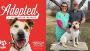Hond vindt eindelijk een warme thuis na 5,5 jaar (!) in het asiel, dankzij een enorm billboard langs de weg