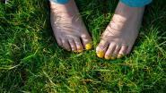 Op blote voeten door Liedekerke stappen? Dat kan tijdens de blotevoetenwandeling