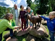 Speciale gids stadsboerderij Weizigt tegen ongemak bij dieren