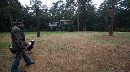 Overpeltse bossen beloond voor duurzaam beheer