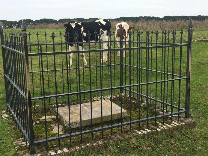 Het vergeten monument staat in de vroegere bedding van de bij Megen afgesneden Maasarm.