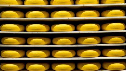 """""""Say cheese"""" misschien wel voorgoed voorbij in Nederland"""