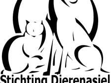Dierenasiel wint opnieuw Clubkas-actie Rabobank