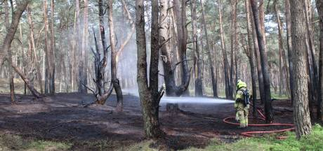 Brand in kurkdroog bos rond Edese Heide