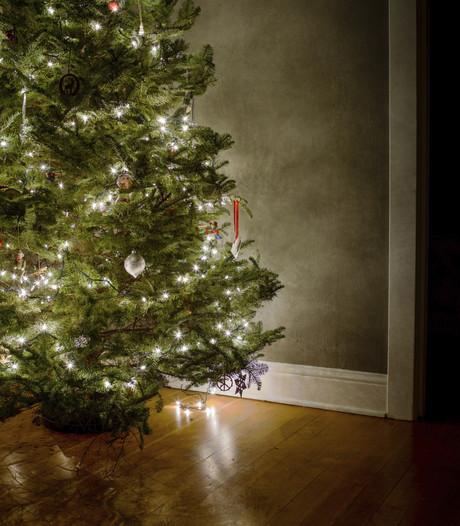 Uber bezorgt kerstbomen in Eindhoven