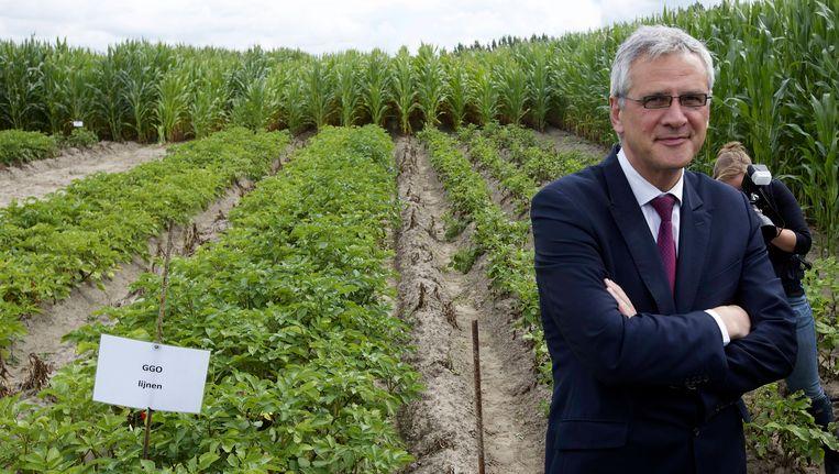Minister Kris Peeters bezoekt een veld met genetisch gewijzigde aardappelen van UGent en HoGent.