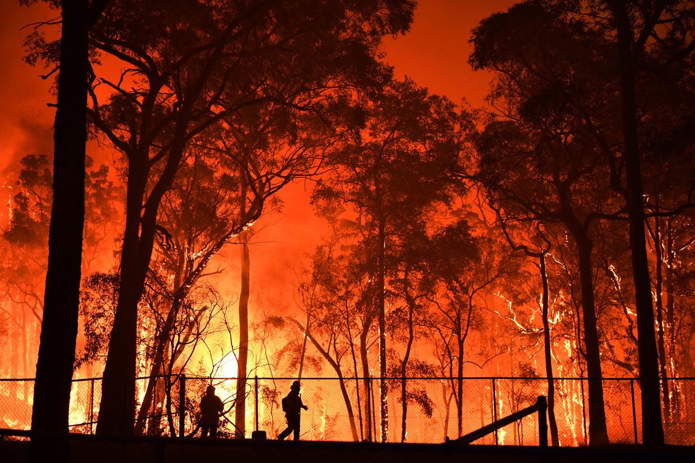 Brandweerlieden bij het vuur in Gospers Mountain.