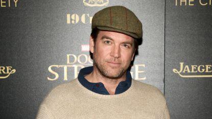 'NCIS'-actrices steunen Michael Weatherly, die van ongepast gedrag wordt beschuldigd