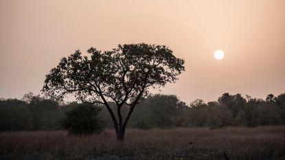 Lichaam gevonden in nationaal park in Benin nadat 2 Fransen vermist raken