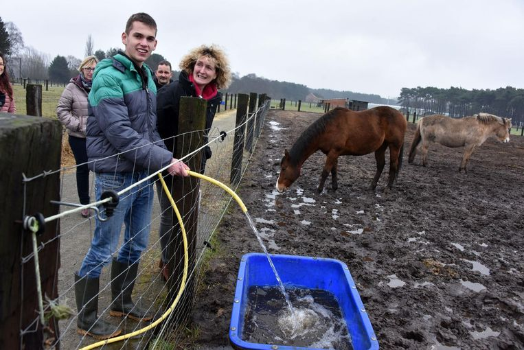 Cedric vult de waterbak van de paarden, rechts kijkt Ingrid van Uffelen toe.