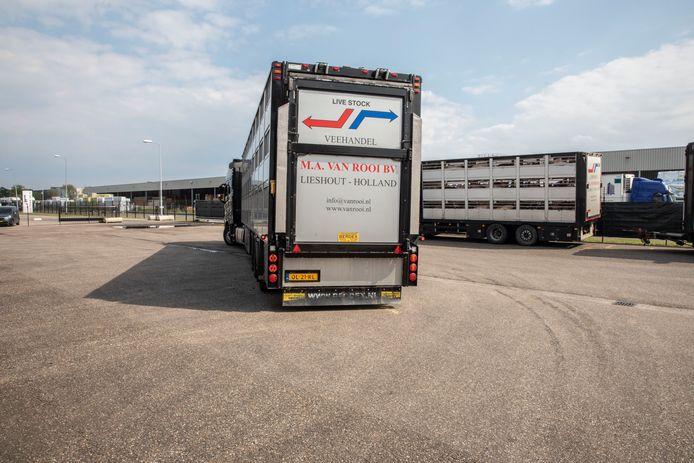Varkenstransporten bij van Rooi Meat aan de Roggedijk in Helmond.