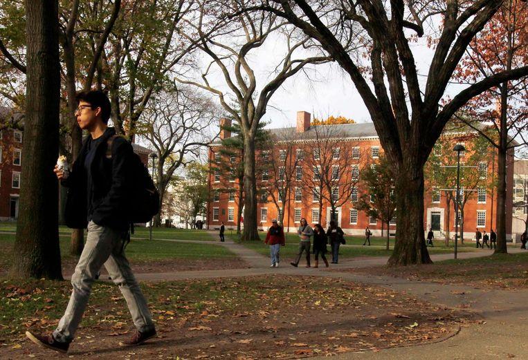 Een student in de Harvard Yard. Beeld reuters