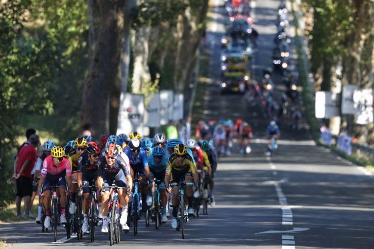 De wind doet het peloton in waaiers uiteenvallen. Wout van Aert – links op de derde rij, in geel-zwart shirt en helm – zou later de sprint winnen.  Beeld AFP