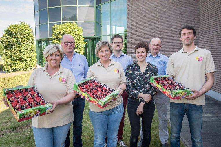 Eerste Fine Fleur Frambozen Voor Sergio Herman Roeselare Regio Hln