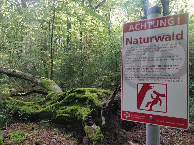 Waarschuwingsbord in het Neuenburger Wald, in het noorden van Duitsland. Beeld Patrick Jansen