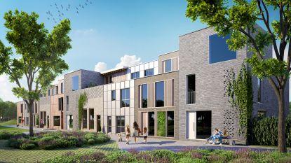 Bouw hofkes gaat nieuwe fase in: constructie Raapsteelhof en Aardpeerhof van start