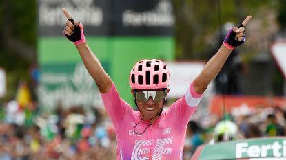 Colombiaan Higuita wint 18de Vuelta-rit na fraaie solo, leider Roglic komt niet in de problemen