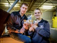 Varkensbedrijf Hendriksen uit Fleringen koos voor biologisch: 'De varkens herkennen mij zelfs'
