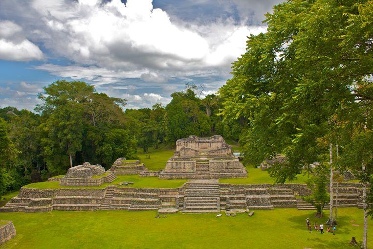 De Mayatempels van Caracol, in het huidige Belize. Beeld RV
