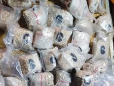 Oosterhouter (47) zes jaar de cel in voor smokkel van 534 kilo Jihad-drugs in graafmachine