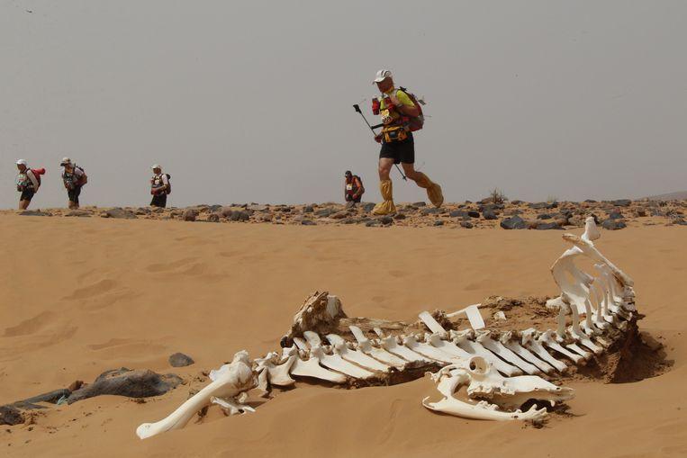 Marathon des Sables (archiefbeeld ter illustratie).
