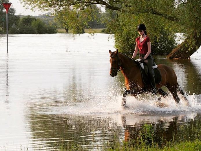 Nu er toch hoog water is, kan je er natuurlijk heerlijk mee in de ijssel rijden en spelen! 😀