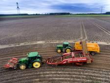 Alle piepers verzamelen: akkerbouwer druk met oogsten van de aardappelen