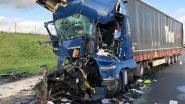 """E19 richting Antwerpen volledig versperd in Brecht door ongeval met trucks: """"Vermijd omgeving!"""""""