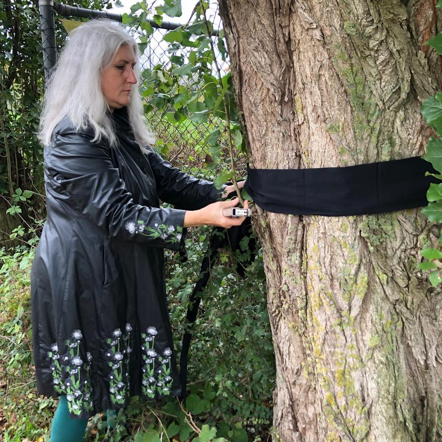 Gemeenteraadslid Eline Lauret bond dinsdag een zwart lint rond een van de 62 bomen die de volgende dag gekapt zouden worden.