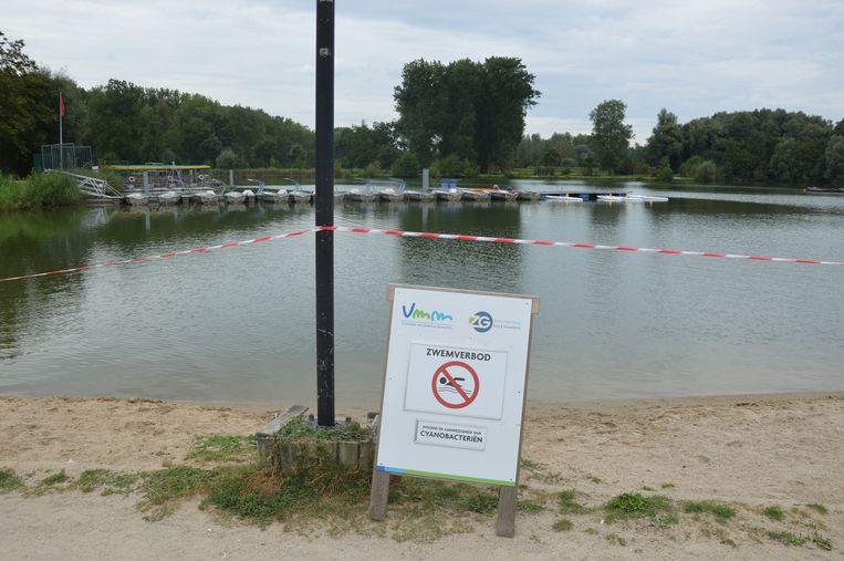 De vijver voor watersporten in De Gavers is momenteel afgesloten door een besmetting van blauwalgen. De zwemzone is wel open.