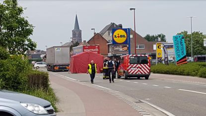 Truck rijdt voetgangster dood in Rijkevorsel