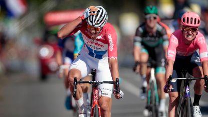 """Ploegleider laat zich uit over Mathieu van der Poel: """"Hij is vaak het pispaaltje bij ons"""""""
