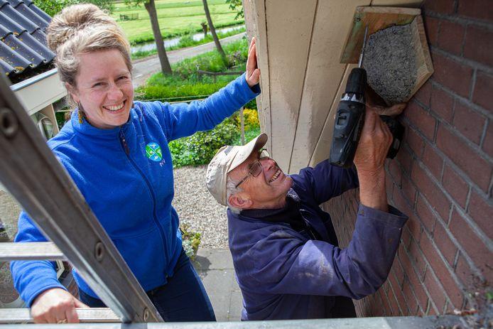 Carolien en haar vader Ko Kooiman bevestigen een kunstnest voor de huiszwaluw aan het overstek van het huis.