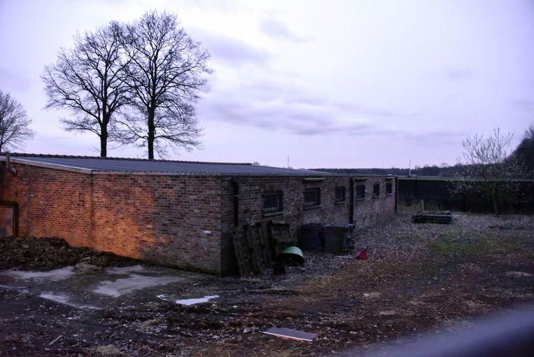Een deel van de gebouwen waarin de honden zijn ondergebracht.
