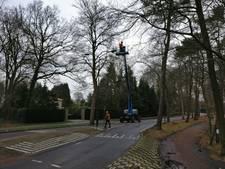 23 bomen gekapt langs Moergestelseweg in Oisterwijk
