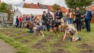 Kinderen van Banneuxwijk bezegelen binnenpleintje met bloembollen