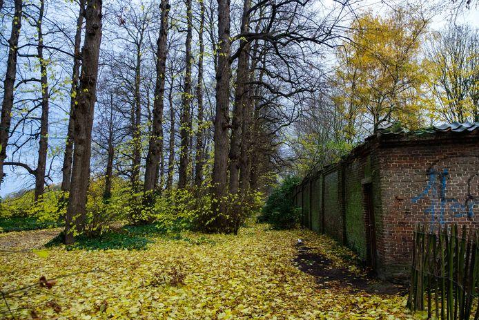 De nieuwe parking moet aan de zomerlindendreef komen richting het kasteel en de koetshuizen van ter Linden.