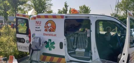 Noodkreet dierenambulance Altena: 'Zorg voor gewonde dieren nu niet goed geregeld'